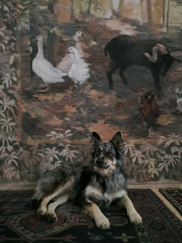 Arazzi-tappezzeria-wallpaper-detail